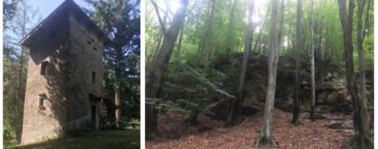 """Roccolo and """"zero kilometre"""" wood in the Malcantone"""